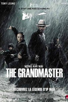 Ip Man 4 – The Grandmaster izle