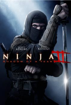 Ninja: Shadow of a Tear Full izle