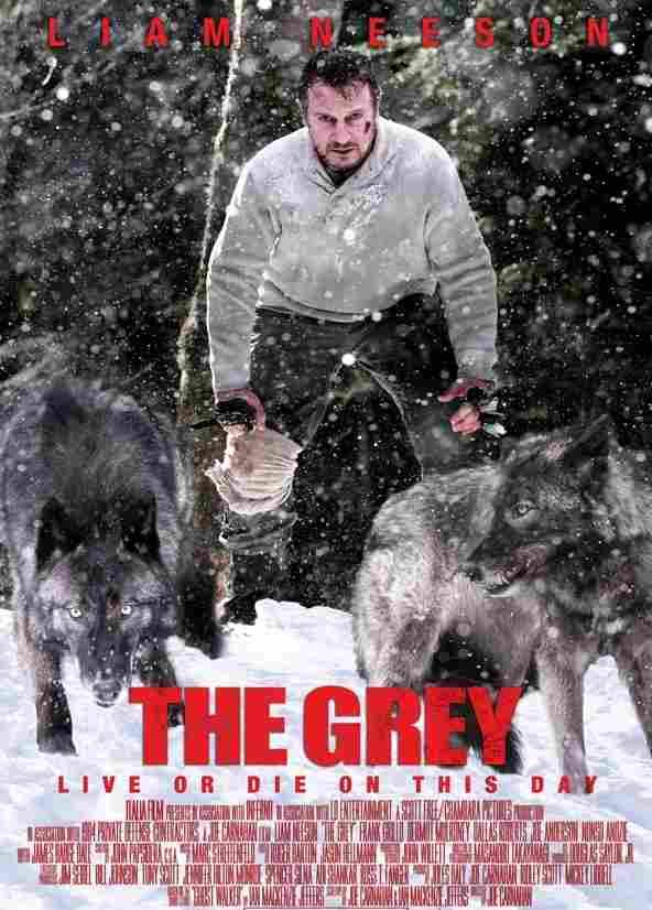 the grey turkce dublaj izle
