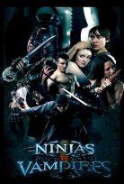 Ninjalar Vampirlere Karşı Türkçe Dublaj izle
