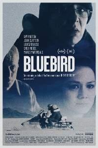 Mavi Kuş – Bluebird 2013 izle