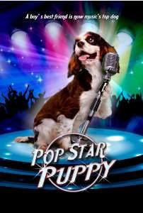 sarkici kopek pop star puppy full