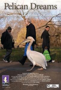 pelican dreams 2014 turkce dublaj izle 162
