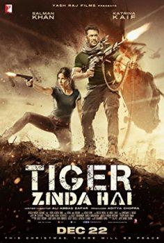 Tiger Zinda Hai   720p  
