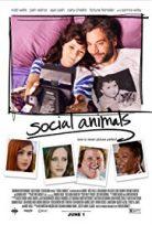 Kaçınılmaz İlişki – Social Animals