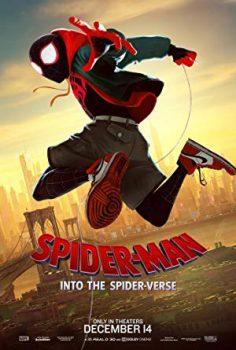 Örümcek-Adam: Örümcek Evreninde Filmi HD izle