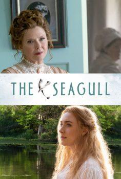Martı The Seagull Filmini Seyret