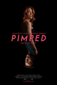 Pimped 2018 HD + 18 Yetişkin